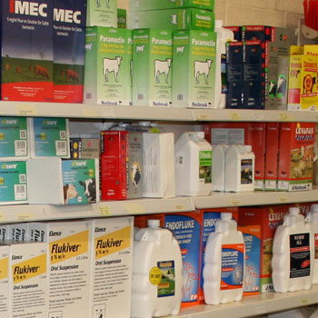 Animal doses at Tuam Mart Store